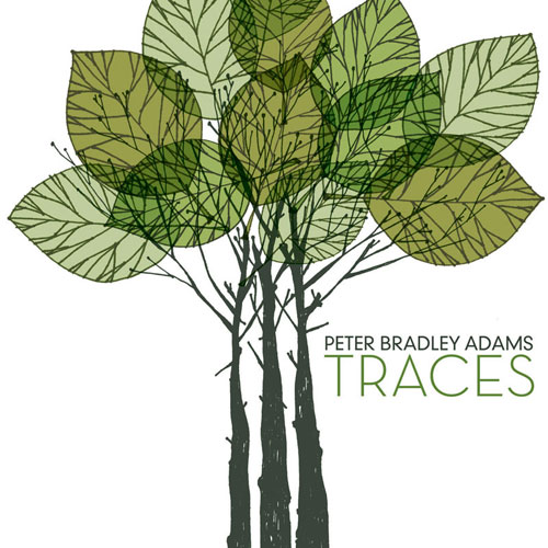 Peter Bradley Adams – Traces