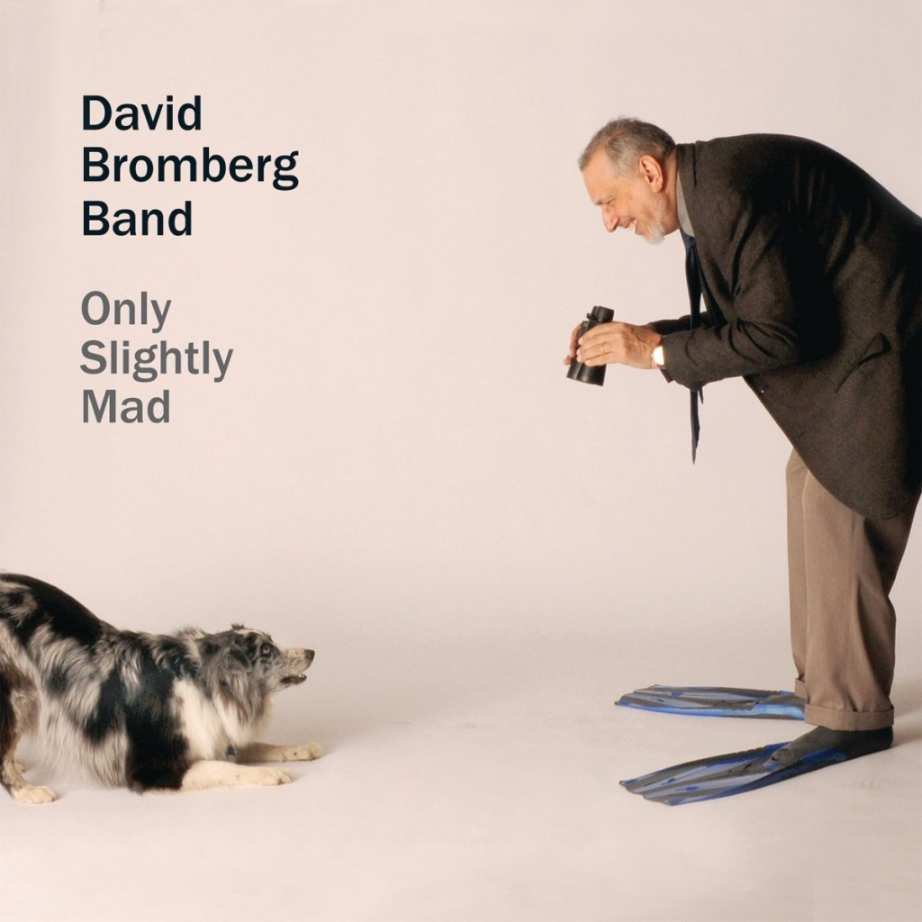 David Bromberg – Only Slightly Mad